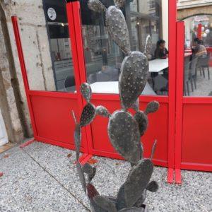 Cactus modèle ATACAMA