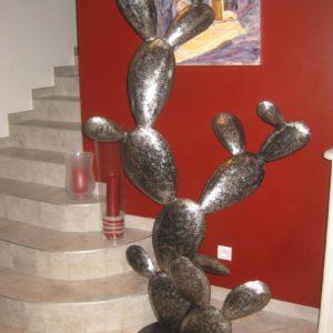 Cactus modèle SALSA